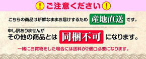 産地直送時鮭(トキシラズ)★2.2kg1本★