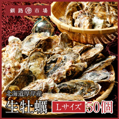 【産地直送!】生牡蠣(殻付き)50個 北海道 厚岸産 Lサイズ 殻付き生食用