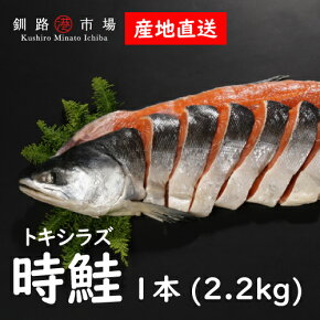 厳選【時鮭の切身】