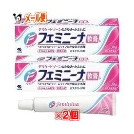 【第2類医薬品】フェミニーナ 軟膏S 30g × 2個セット(鎮痒消炎薬)【小林製薬】
