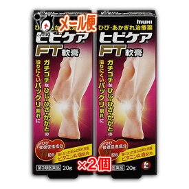 【第3類医薬品】ヒビケアFT軟膏 20g × 2個セット【池田模範堂】