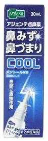 【第2類医薬品】メディズワン 奥田製薬 アジェンテ点鼻薬 クール (30mL) 鼻水 鼻づまり くすりの福太郎
