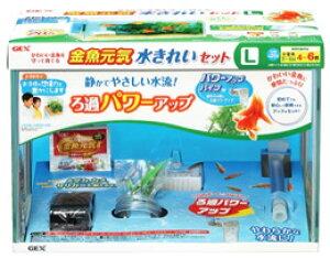 ジェックス 金魚元気 水きれいセット L (1セット) 水槽セット 観賞魚用品