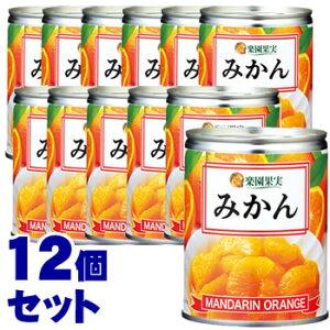 《セット販売》 加藤産業 楽園果実 みかん EO M3号缶 (350g)×12個セット 缶詰 ※軽減税率対象商品