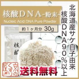 核酸DNA 30g(粉末タイプ)