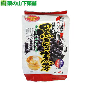 黒豆麦茶 国産丹波黒 100%使用 10g×40袋 (100g) 【健康茶】