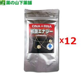 【12個セット】【送料無料】核酸エナジーお得用アルミパック 300粒
