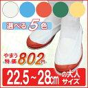 Vシューズ 102型 (22.5〜28.0cm) 上靴 うわぐつ 上履き スクールシューズ 大人 メンズ レディース