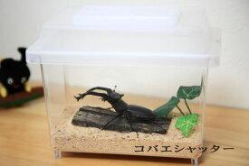 コバエシャッター蓋+ケース/大★いやなコバエをピッタリシャット!保湿効果もあり、クワガタ、カブト飼育を安心して楽しむことが出来る万能昆虫ケース!