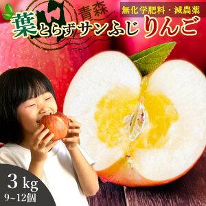 りんご 3kg 約9-12玉 送料無料 (青森県産 特別栽培の葉とらずりんご) 食物繊維 カリウム 青森 本場 サンふじ 林檎 リンゴ Apple 蜜入り 高糖度 産地直送 家庭用 訳あり りんごジュース 化学肥料不