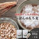 もち麦 国産 スティック 10包 2袋セット 送料無料 (愛媛 ダイシモチ) 米 雑穀 もち麦 もちむぎ もち麦 送料無料 もち…