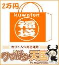 2万円福袋!