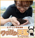 ◆黒土Mat10L 【昆虫マット】採卵専用、卵を産ませたいならこの発酵マット、ミヤマ、ネブト、の幼虫のエサにも!菌床を土に近い状態まで完全自然発酵させたマット!...