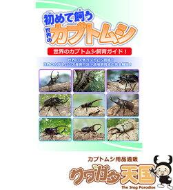 初めて飼うカブトムシ【世界の】誰でも知っている日本のカブトムシの飼育を詳しく解説!