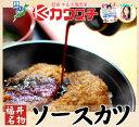 ふくい名物 ソースカツセット[ヒレカツ9枚・メンチカツ6個]【food】