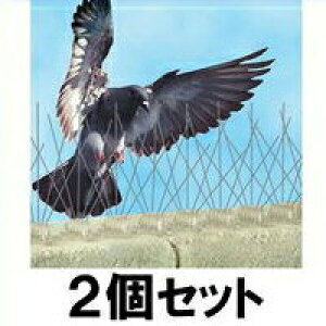 【バードスパイク 2個セット】鳩よけ、カラスよけ