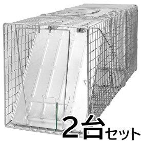 【踏板式 捕獲器 改良型(シルバー)2台セット】(W26×H31×D81cm) アライグマ ハクビシン 防除