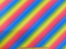 170371B 2WAY トリコット生地 布 バイアスレインボー 170371B 転写プリントボーダー柄 舞台衣装 発表会 学園祭 文化祭 運動会 商用利用可能