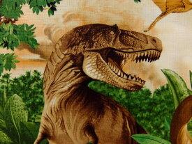 輸入 USAコットン 入園入学 生地 布 ダイナス 大柄 恐竜 C1545Green タイムレストレジャーズ 商用利用可能