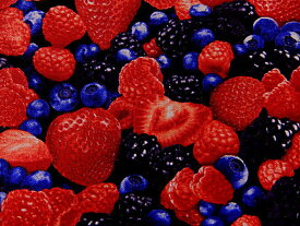 輸入 USAコットン 生地 布 フルーツ C1811-Berry タイムレストレジャーズ 果物 ミックスド ベリー 商用利用可能