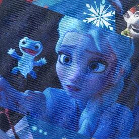 デジタルプリント キャラクター生地 布 ディズニー アナと雪の女王2 Frozen II G7394−1A 2020年 入園入学 商用利用不可