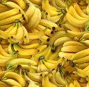 USAコットン 生地 布 フレッシュバナナ 461YELLOW フードフェスティバル エリザベススタジオ Food Festival 商用利用…