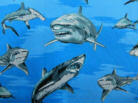 BBHC-1153-7 輸入 生地 布 USAコットン シャークウィーク サメ BBHC1153-7 ホフマンカリフォルニアファブリックス 商用利用可能