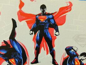 在庫処分 キャラクター生地 布 正規ライセンス品 輸入 USAコットン バットマン VS スーパーマン ジャスティスの誕生 23420104−1 スーパーマン ライトグレー 商用利用不可