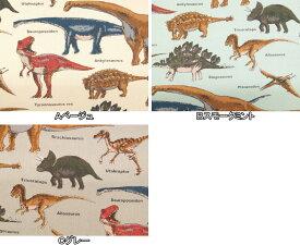 入園入学 ツイル生地 布 ダイナソー 恐竜図鑑 KTS6036 コットンこばやし 商用利用可能