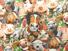 輸入 USAコットン 生地 布 ファームセルフィーズ 1323-GREEN エリザベススタジオ 自撮り動物 ウマ ウシ ブタ ヒツジ ロバ 商用利用可能