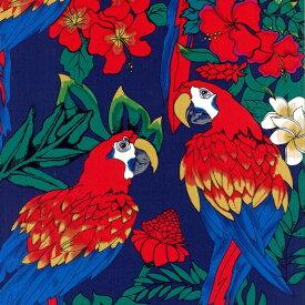 輸入 生地 布 USAコットン Parrots パロッツ オウム BBHC1033-19-Navy ホフマンカリフォルニアファブリックス 商用利用可能