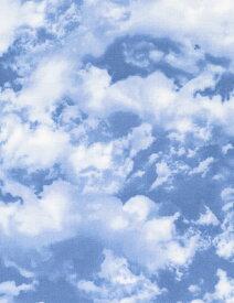 輸入 USAコットン 生地 布 ネイチャー スカイ C6858-sky 青空 入園入学 タイムレストレジャーズ 商用利用可能