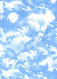 輸入 USAコットン 生地 布 ネイチャー スカイ C9083-Blue 青空 入園入学 タイムレストレジャーズ 商用利用可能