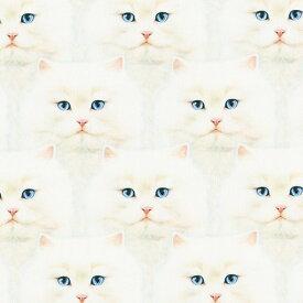輸入 生地 布 USAコットン ウィスカーズ&テイルズ ネコのひげと尾っぽ 白猫フェイス AYVD19561-1 ロバートカフマン 商用利用可能