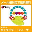 送料無料 ダッドウェイ Sassy キャタピラー・ティーザーTYSA634 【D】【ベビー・おもちゃ・歯固め】【メール便 送料無料】【代引不可】