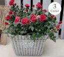 【15%OFF】植木鉢 プランター ファイバーストーン [194-775M] 8号 おしゃれ 可愛い 正方形 花柄 アンティーク風 ガーデニング (サイズ …