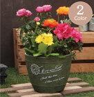 植木鉢プランターファイバーストーン[194-951S]おしゃれ可愛い花アンティーク風ガーデニング