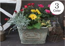 【15%OFF】植木鉢 プランター ファイバーストーン [194-925S] 8号 おしゃれ 可愛い 長方形 花 アンティーク風 ガーデニング (サイズ 横…