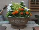 【15%OFF】植木鉢 プランター ファイバーストーン [194-862M-72s] 11号 おしゃれ 可愛い 大型 楕円形 花 アンティーク風 ガーデニング …