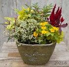 【寄せ植え】季節の寄せ植え/季節の花苗/鉢植え[100-3013-3]プロの寄せ植え/プレゼント/誕生日/ギフト/お祝い/贈り物/おしゃれ/かわいい/ファイバーストーン(194-963S-78)