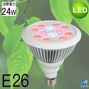 植物育成ランプ LED電球 ビーム電球 水耕栽培ランプ 室内用 E26 24W led 植物育成ライト 植物育成灯  プラントライト 園芸 室内栽培 水草水槽 野菜工場 植物工場