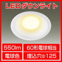 LEDダウンライト 電球色 60形電球相当 天井 照明器具 拡散 インテリア 埋込 廊下 通路 おしゃれ