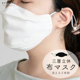 (三層立体布マスク 2枚セット) メール便{P24} マスク 立体マスク 不織布フィルター 花粉 洗える 大人用 2color