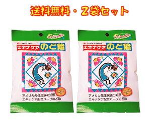 エキナケア のど飴 ノンシュガー 15粒入り ×2袋セット 松浦薬業 送料無料