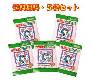 エキナケア のど飴 ノンシュガー 15粒入り ×5袋セット 松浦薬業 送料無料