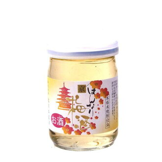 Sake of Kyoto hannari Kyo plum wine 100 ml liqueur and 13 degrees Kitagawa Honke, Kyoto produced