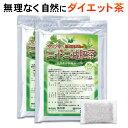 ダイエット お茶 二十二減肥茶 4ヵ月分120包(60包×2袋)(自然植物100% 安心 安全 健康 健康食品 ダイエット食品 ダ…