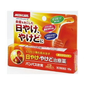 【第2類医薬品】 メディケア パンパス軟膏 15g