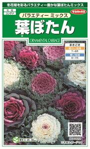 サカタのタネ 実咲葉ぼたん バラエティーミックス1袋からの採苗本数 約30本送料 6袋以上 300円   6袋未満 500円各種タネ取り合わせでご注文できます