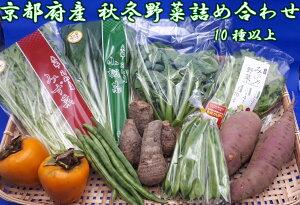 野菜 詰め合わせ 10種 京都府産 新鮮 やさい セット 京野菜 おいしい 採れたて お取り寄せ お土産 ギフト プレゼント おすすめ ほうれん草 茄子 ブロッコリー にんにく 里芋 しいたけ 白菜 キ